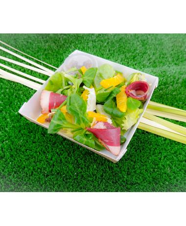 Salade verte aux agrumes et magret de canard fumé, vinaigrette au Balsamique